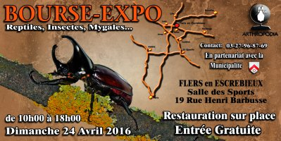 Bourse Expo Arthropodia
